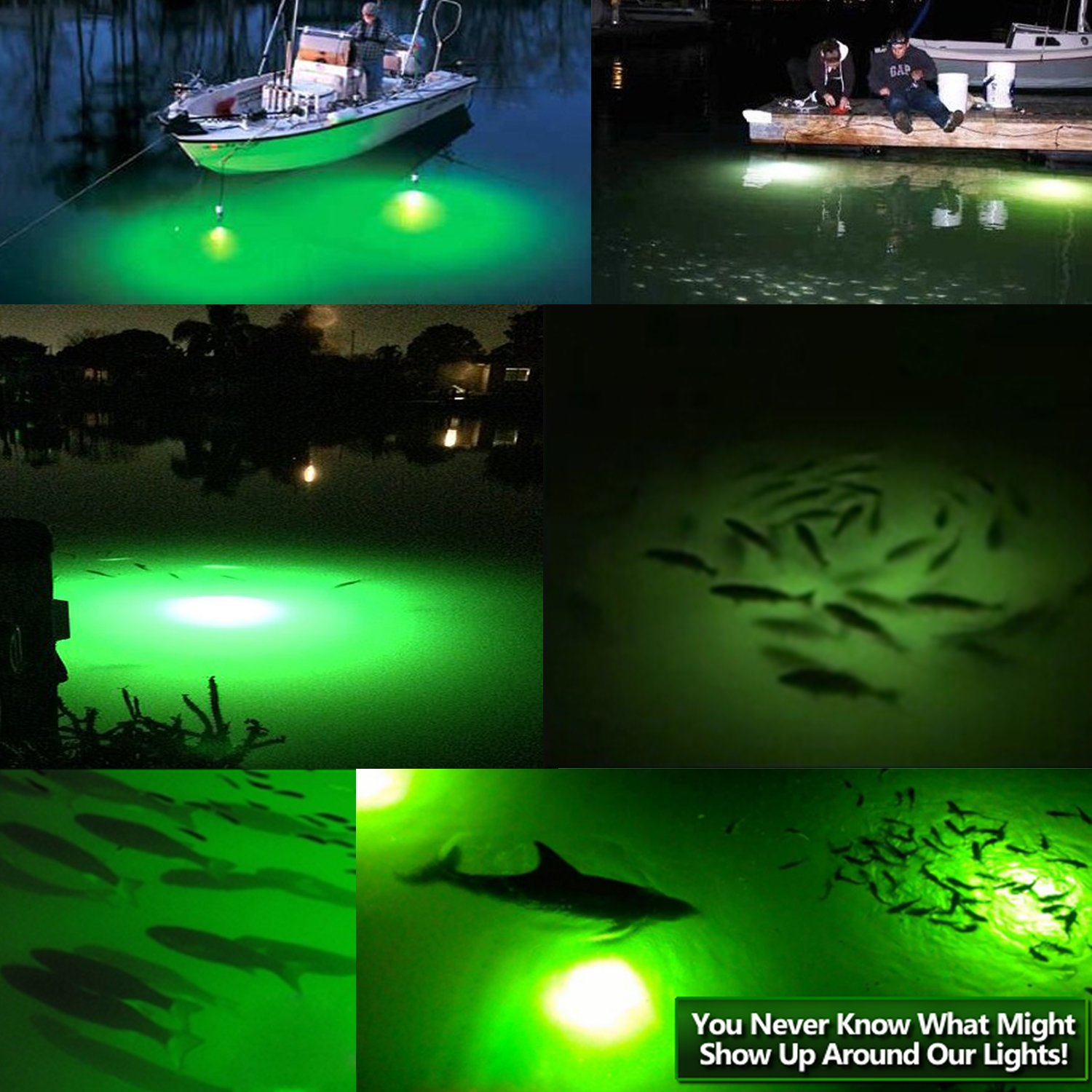 Goture 12V IP68 High-Power LED Fully Submersible Night Fishing Light Deep Drop Underwater Lure Bait Fish Finder Lamp with 5.47 Cable for Krill, Phytoplankton, Squid - Blue