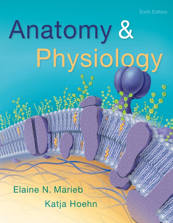 Anatomy & Physiology (6th Edition): Elaine N. Marieb, Katja Hoehn ...