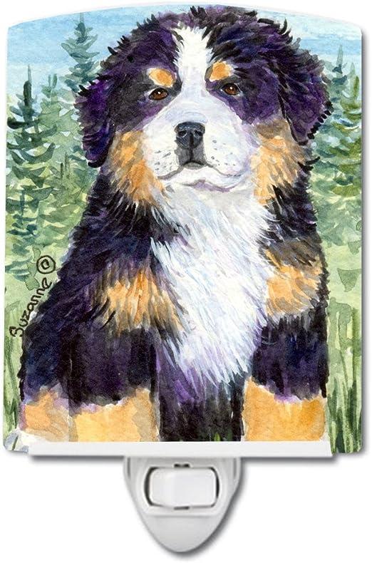 Carolines Treasures Bernese Mountain Dog Night Light 6 x 4 Multicolor
