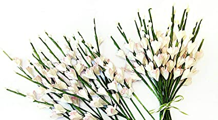 Amazon nava chiangmai handmade pink gypsophila flowers 20pcs nava chiangmai handmade pink gypsophila flowers 20pcslberry paper flowers with wire stems miniature great mightylinksfo