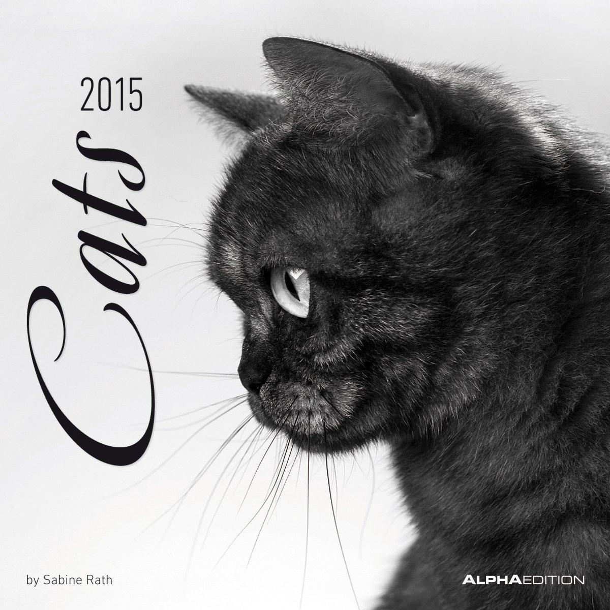 Cats 2015 - Katzen - Broschürenkalender (30 x 60 geöffnet) - schwarz/weiß - by Sabine Rath