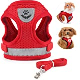 Idepet Cat Harness and Leash for Walking Adjustable Soft Mesh Vest Harnesses with Reflective Strap Metal Leash Ring…