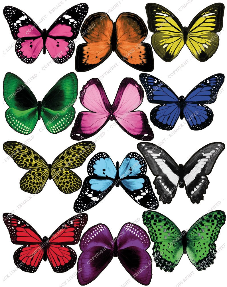 Cakeshop 12 x PRE-CUT Mixed Color Edible Butterfly Cake Toppers