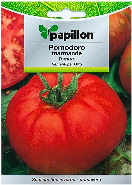 Semillas Tomate Raf (1.5 Gramos): Amazon.es: Jardín