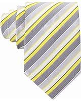 Scott Allan Mens Striped Tie