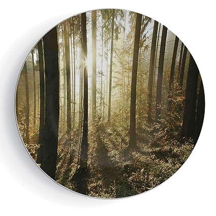Amazon Com Iprint 6 Ceramic Decorative Plates Forest Print