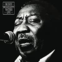 Muddy Mississippi Waters