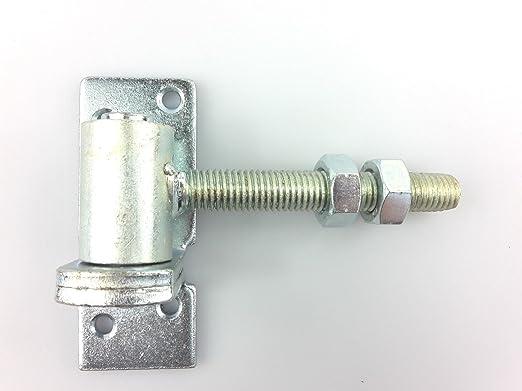 Angel Puerta (regulable de 2 piezas goznes eje con diámetro 16 mm M14 de puerta bisagra anschraubplatte galvanizado: Amazon.es: Jardín