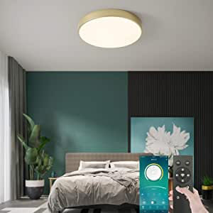 Flush Mount LED Ceiling Light Fixture, 30W Smart Dimmable Led Ceiling Lamp with Remote Control, 40cm Round Smart LED Ceiling Lamp for Bedroom/Kitchen/Dining Room Lighting, 3 Color Temperatures