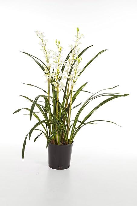 Orchidea Cymbidium Artificiale In Vaso, 4 Rametti, Bianco, 95 Cm   Orchidea  Fiorita