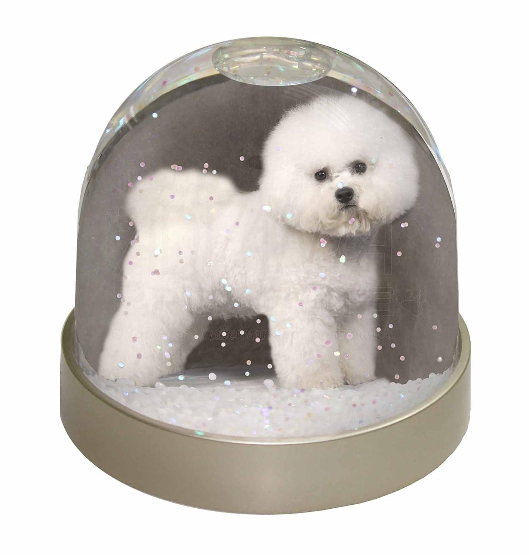 Advanta Bichon Frise Snow Dome Globe Gift, Multi-Colour, 9.2 x 9.2 x 8 cm Advanta Products AD-BF5GL
