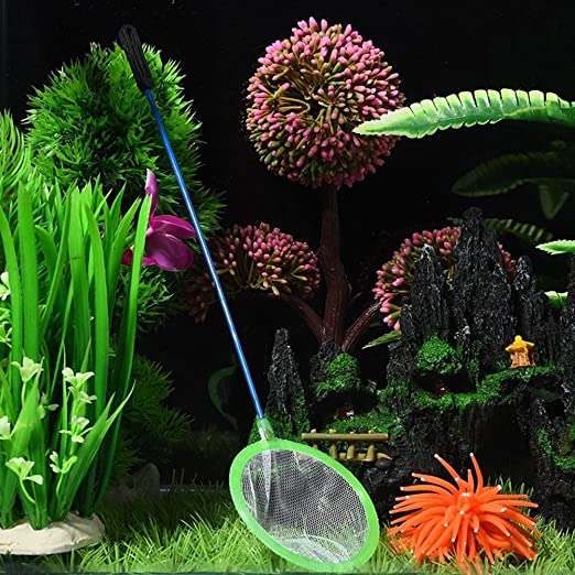 4/x milopon /Épuisette t/élescopique enfants Petit stable insectes papillon P/êche attraper couleur al/éatoire S//M//L//XL