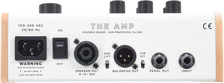 Milkman Sound The Amp:リアパネル