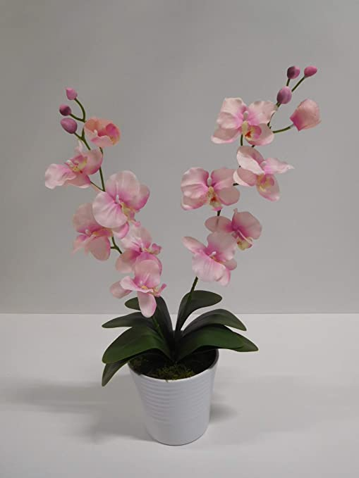 Orchidee 2 Rispen Kunstblume Kunst künstlich 60 cm rot 1017101-01 Topf F73