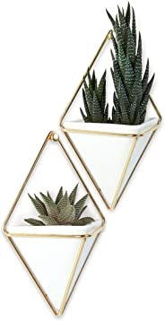 Umbra Trigg Hanging Planter & Geometric Wall Decor (Small, Set of 2) - Great For Succulent Plants-White Ceramic/Brass