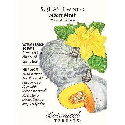 Sweet Meat Winter Squash Seeds - 3 grams - Heirloom: Toys & Games
