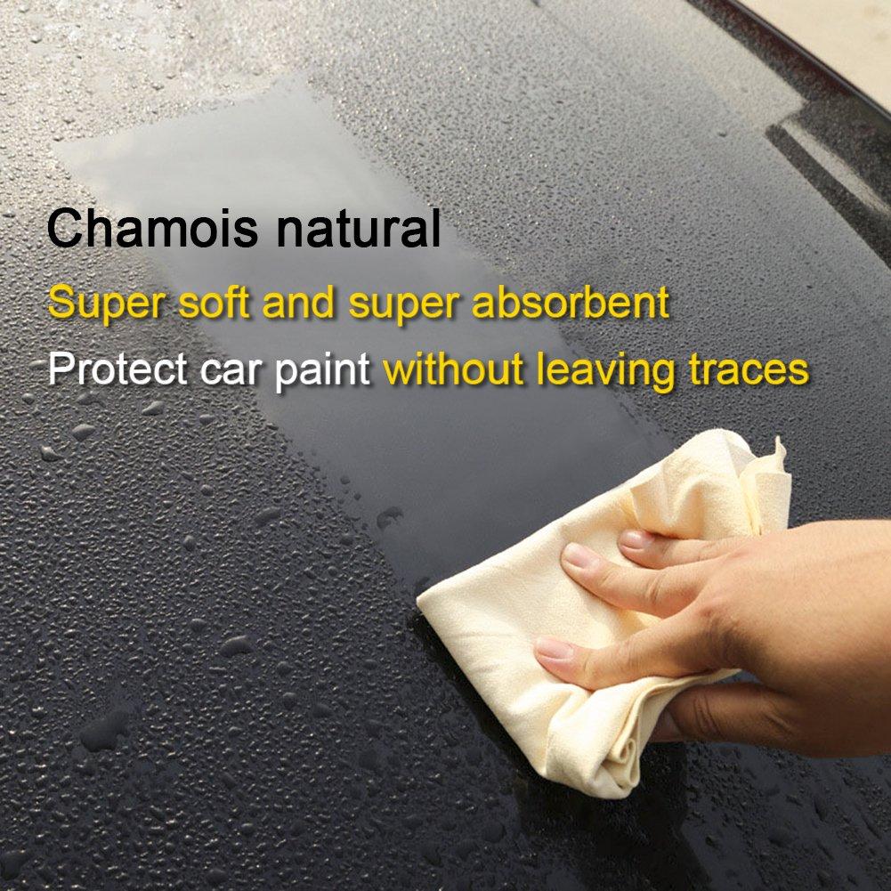 Coche Pa/ño De Fibra Natural L//M//S Gamuza de limpieza Riverlake aut/éntica piel de ciervo Auto coche lavado secado toalla super absorbente . 3/tama/ños disponibles L-Size 2/unidades