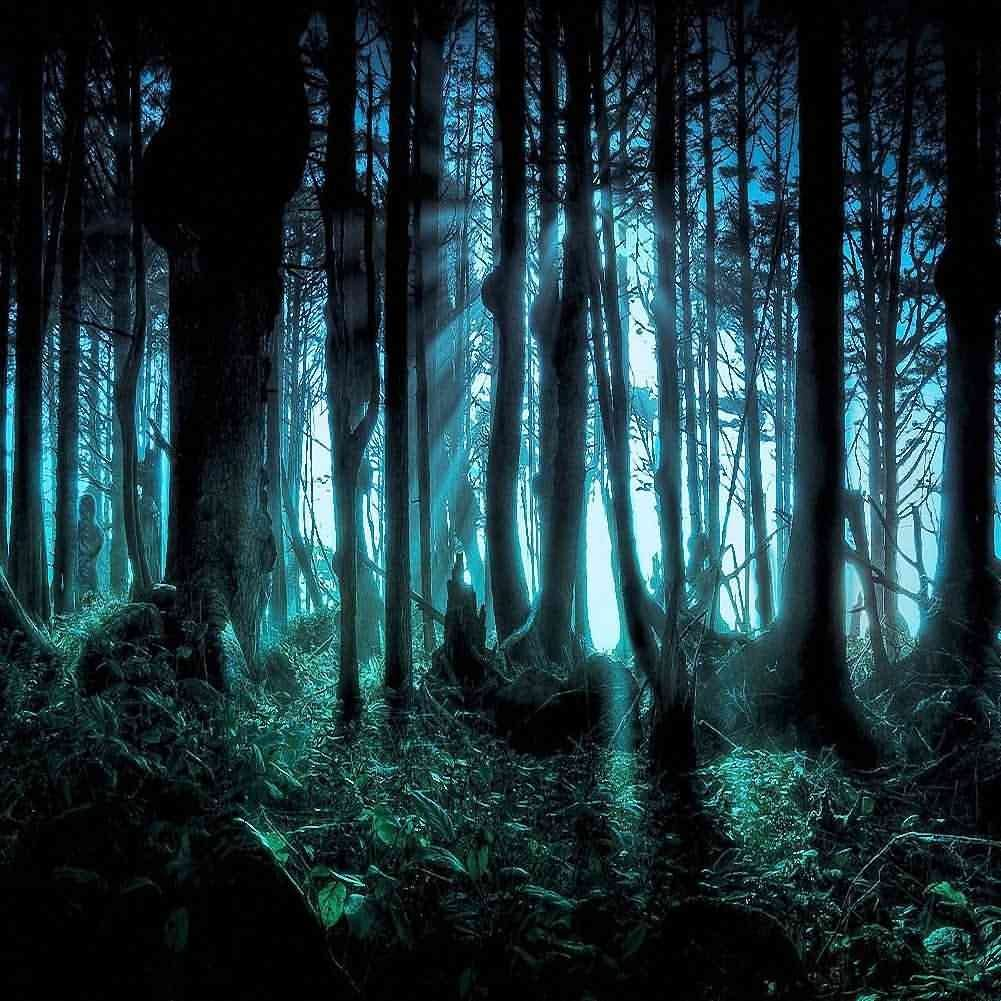GladsBuy Rotten Forest 10 x 10 Computer Printed Photography Backdrop Forest Theme Background LMG-125