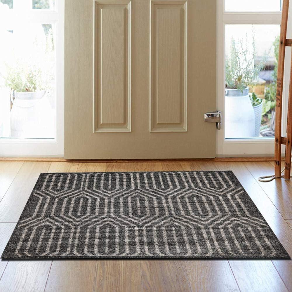 Summer Machine Washable Floor Mat Door Rug Absorbent Non Slip Rubber Backing