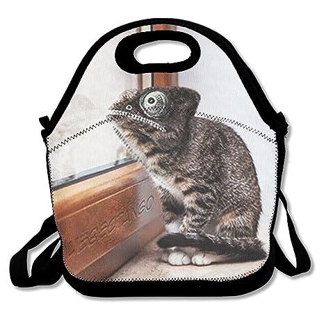 Momento rana cara de gato bolsa de alimentos Gourmet bolso aislante bolsa bolso para la escuela