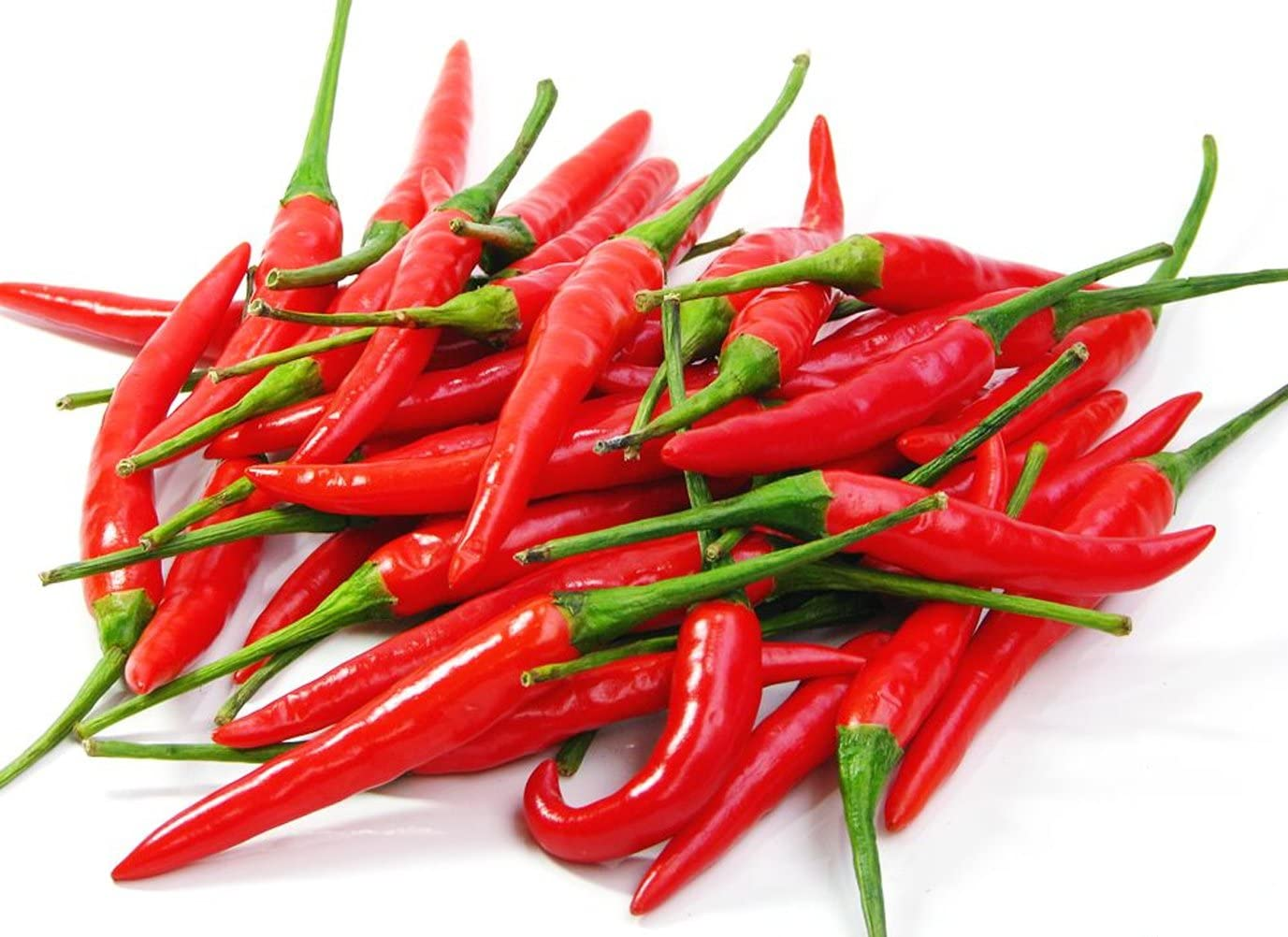 Hottes Birds Eye Chili Seeds Thai Hot Pepper Seeds 106 Seeds