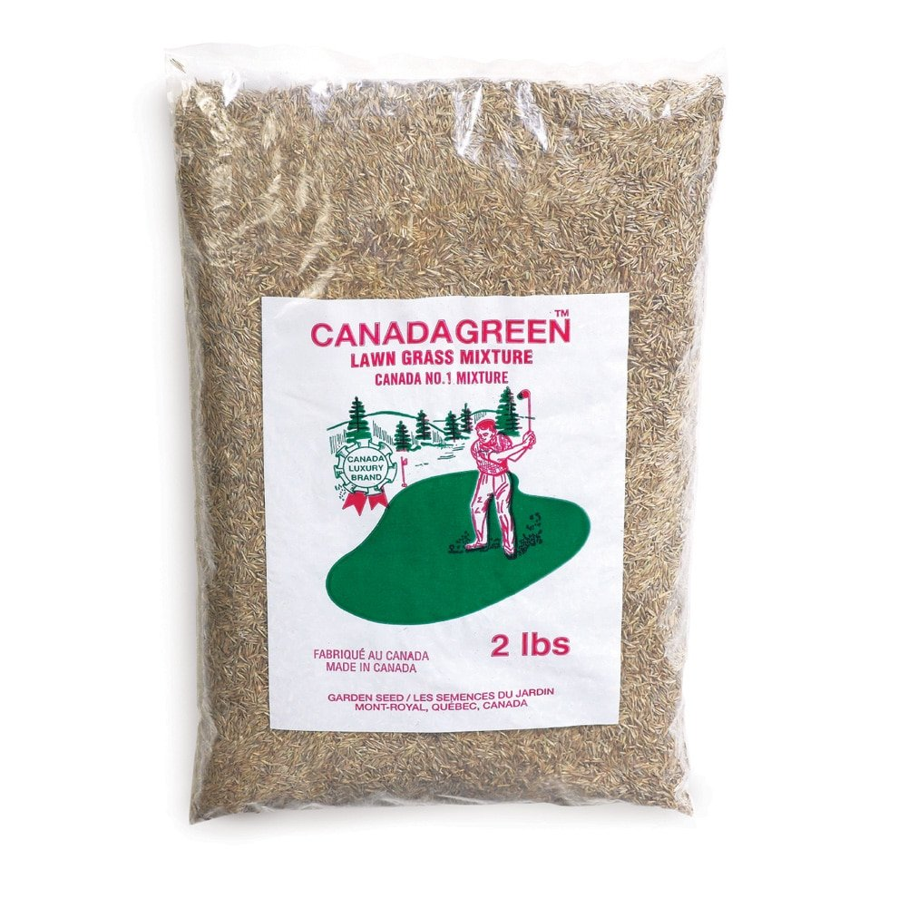 Canada Green Grass Seed - 2 Lb. Bag, Brown