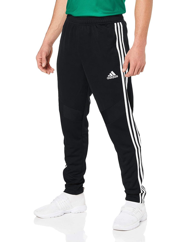adidas Herren Sport Trousers Tiro19 34 PNT: