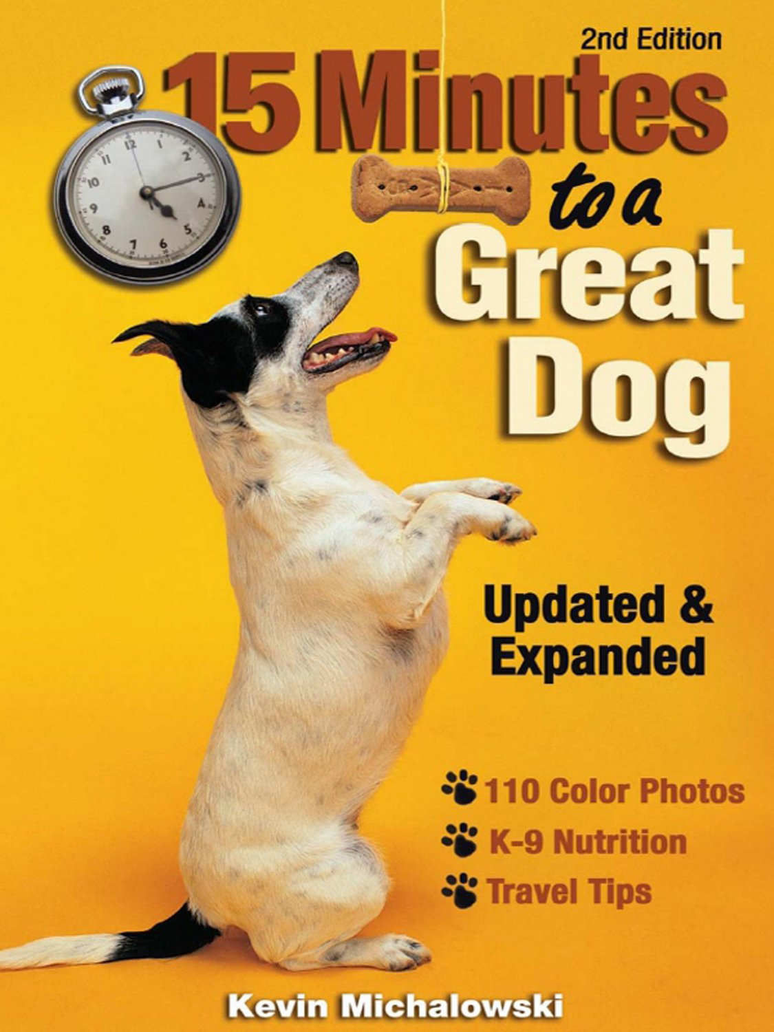 Download 15 Minutes to a Great Dog pdf