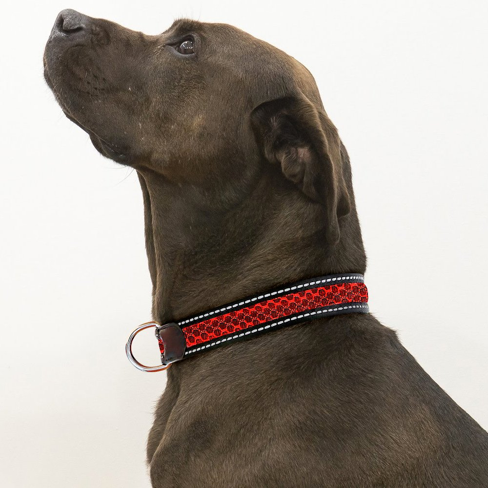 RED M RED M Reflective Dog Collar, Heavy Duty& Adjustable Collar for Small Medium Large Dogs, Dog Safety Collar in Night Time (M, Red)