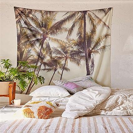 More Dorm5 dorm room resolutions for