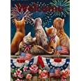 Selmad Welcome July 4th Patriotic Cat Garden Flag Double Sided, Firework Flower Quote Burlap Decorative House Yard Decoration