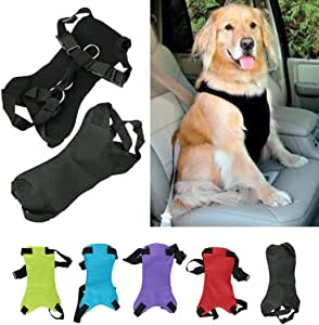 XCSSKG - Cinturón de Seguridad para Perro, Gato o Mascota, Tamaño ...