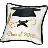 Class of 2018 Graduation Gift Throw Pillow with Money Holder Pocket, High School, College