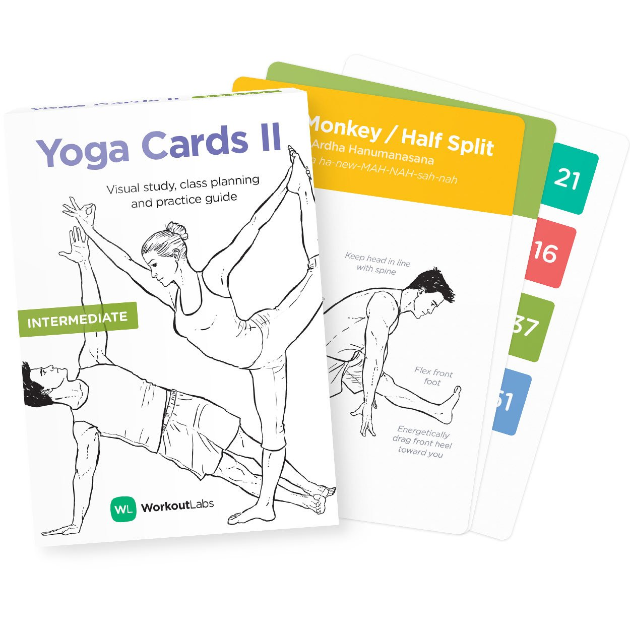 2 /· Plastic Flash Cards Deck with Sanskrit WorkoutLabs Yoga Cards II Intermediate: Premium Visual Study Class Sequencing /& Practice Guide Vol