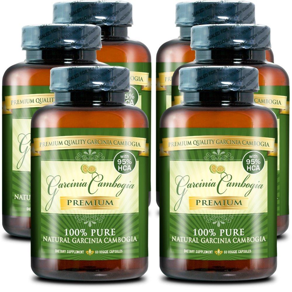 Garcinia Cambogia Premium 95% HCA - Best Natural Weight Loss, Quick Fat Burner and Appetite Suppressant - 360 Vegetarian Capsules, 6 Months Supply - 100% Money Back Guarantee!