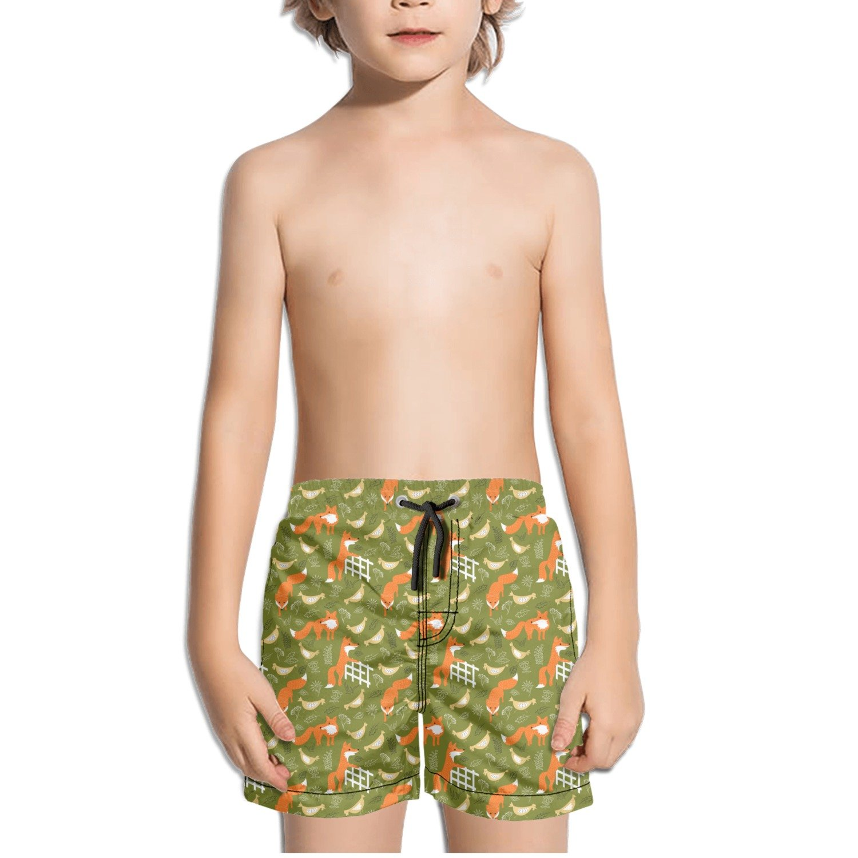 Juliuse Marthar Funny Fox and Hen Swim Trunks Quick Dry Beach Board Shorts for Boys