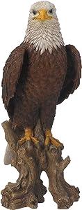 Bald Eagle On Stump