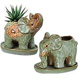 2 Pack Elephant Shaped Succulents Plants Pot with Saucer Retro Glaze Ceramic Flower Pot Garden Yard Flower Succulent Bonsai B