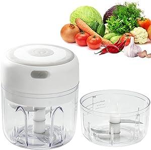 JUJULY Mini Electric Vegetable Onion Garlic Chopper For Kitchen, Food Processor Small Chopper Electric Garlic Grinder Meat Slicer Machine (250 ml&100ml)