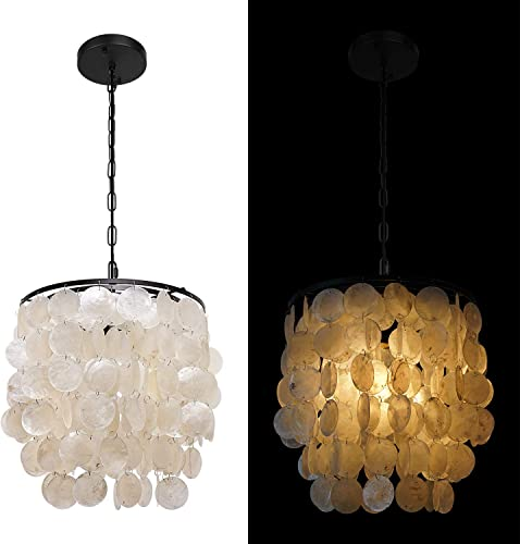 1-Light Modern Shell Chandelier Retro Mini Ceiling Pendant Light