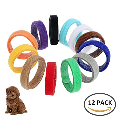 Enjoygoeu 12 piezas Varios Colores Bandas de Algodón Velcro Cachorro ID Collares de Identificación Ajustable para
