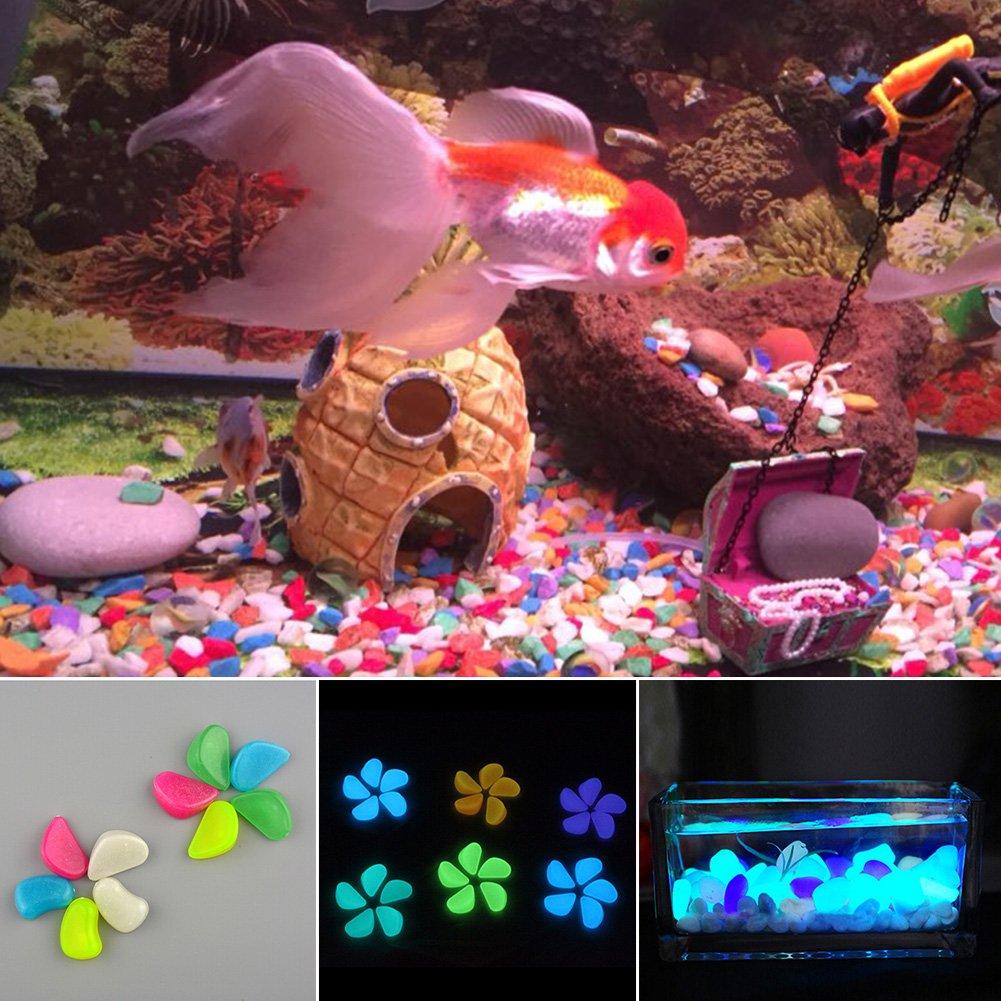 Woopower Piedras Luminosas de Imitación para Acuario, Decoración de Peces, Accesorios Artificiales, Color al Azar (10 Unidades): Amazon.es: Productos para ...