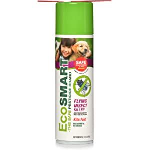 Amazon com : EcoSMART Ant and Roach Killer, 14 oz  Aerosol