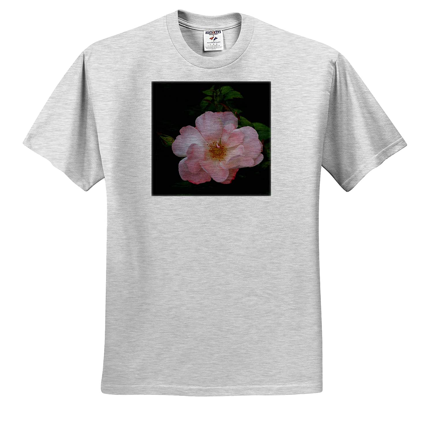 3dRose Stamp City Flowers Photograph of a Beautiful Pink Rose in Full Bloom - T-Shirts