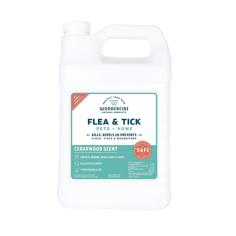 Non Toxic Flea Treatment For Carpets Carpet Vidalondon