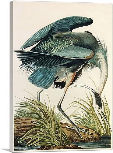 ARTCANVAS Great Blue Heron Canvas Art Print