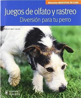 Diversión para tu perro (Mascotas en casa)