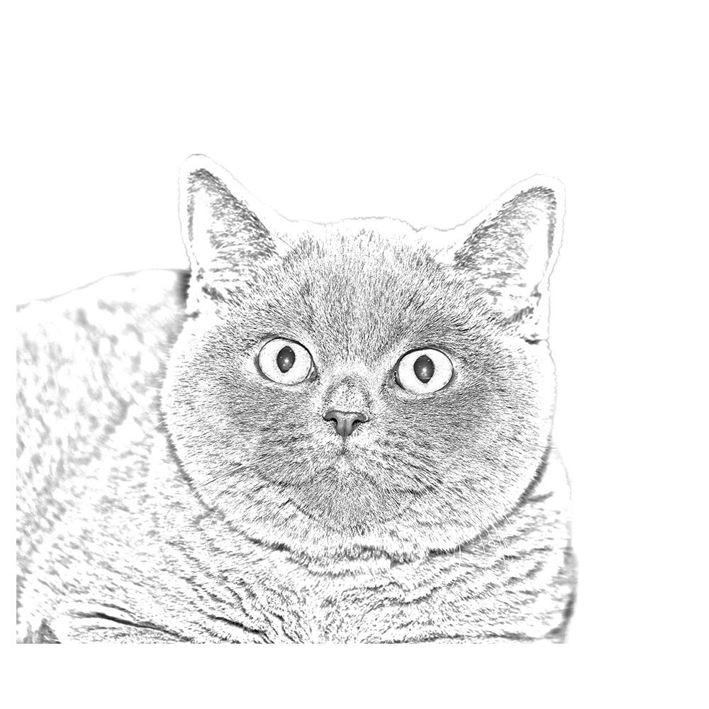 Elegant and Casual Style Art Dog Ltd Clip with an Image of a cat tie pin British Shorthair
