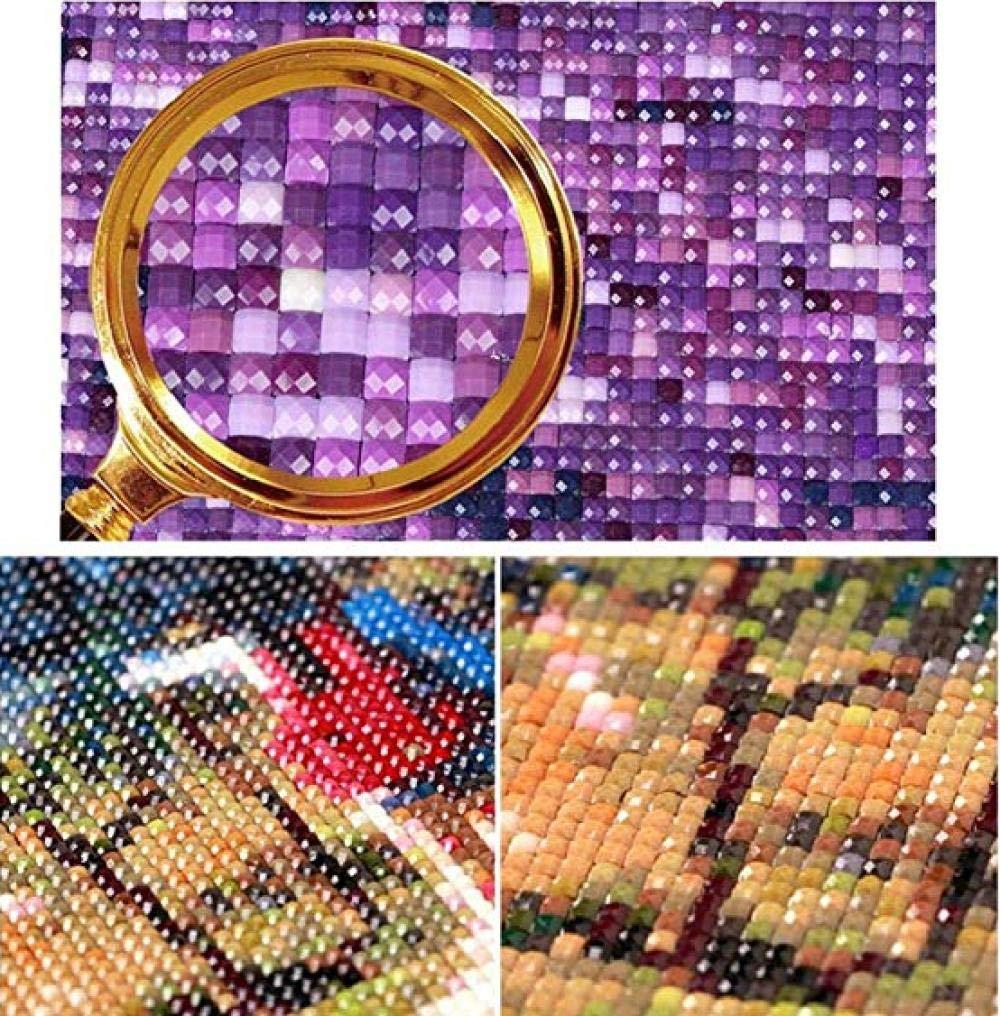 WAFJJ Pintura diamante 5D Caballo DIY 5D Diamond painting,de diamantes de imitaci/ón de cristal,manualidades para decoraci/ón de pared 30X40CM
