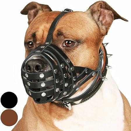 CollarDirect Pitbull Leather Muzzle